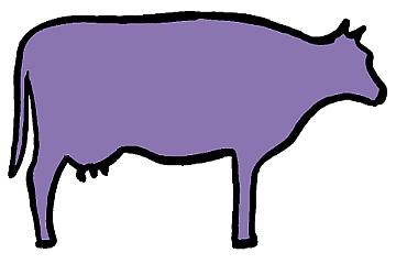 fialova krava 360x240